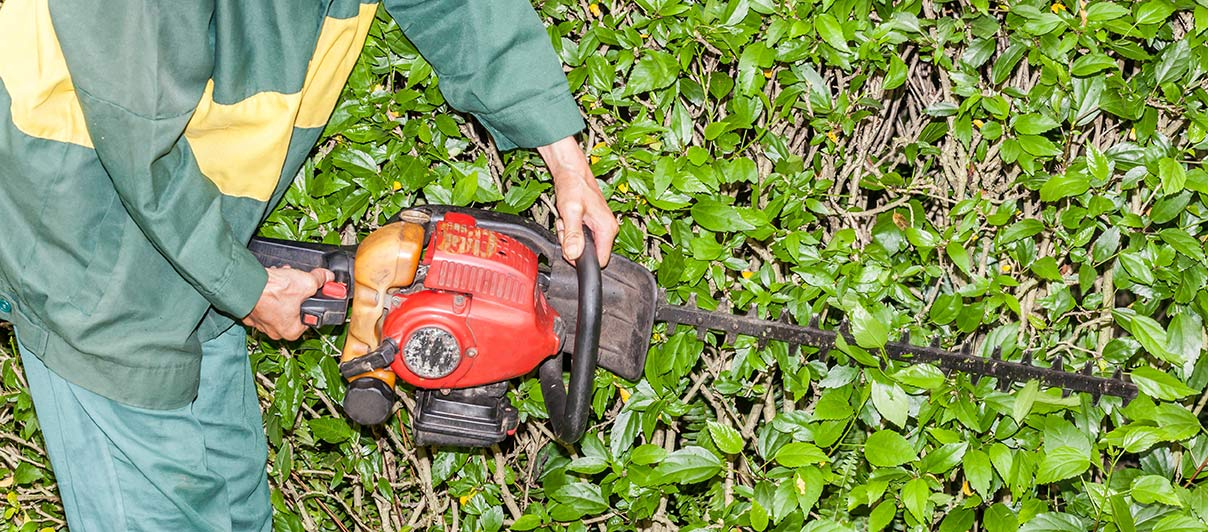 Professional maintenace service vs diy yard innovative for Home and garden maintenance services